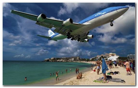 Image Narrow Body Aircraft Airbus Air Travel Airliner Beach