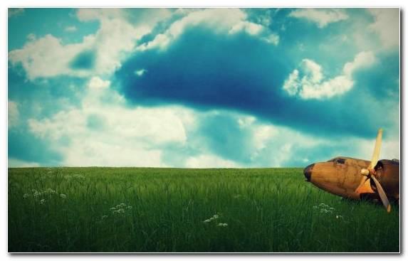 Image Nature Meadow Sky Cloud Prairie