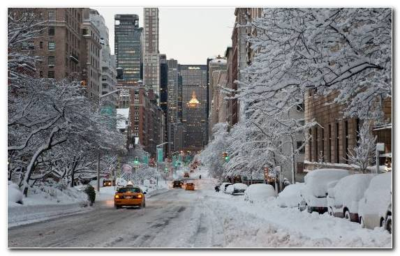 Image Neighbourhood Winter Urban Area Central Park Snow Road