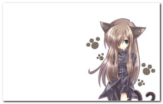 Image Nekopara Tail Photograph Long Hair Cat Girl