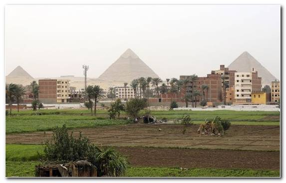 Image News Egypt Newspaper Cairo Historic Site