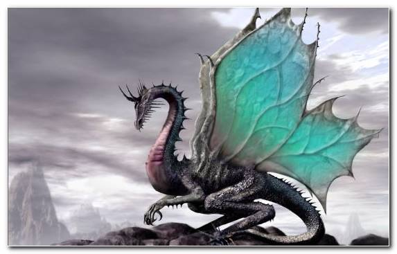 Image organism extinction fantastic dragon mountains