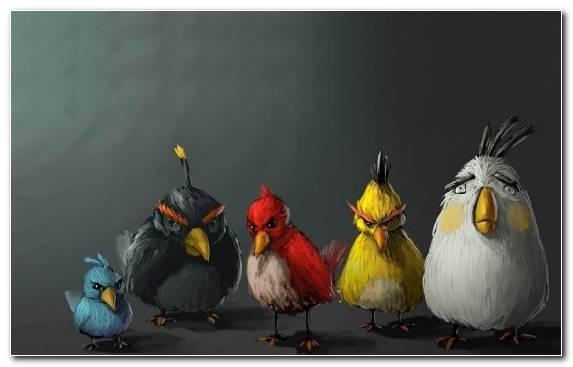 Image Painter Video Games Art Bird Painting