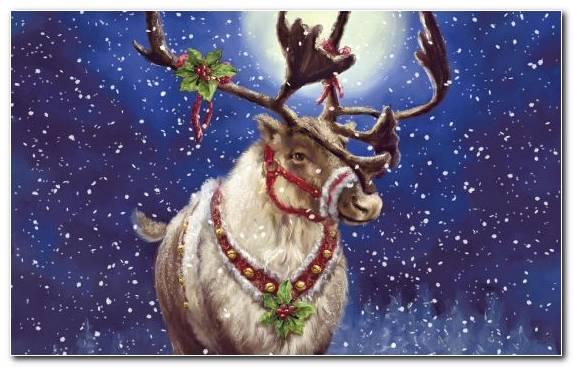 Image Painting Deer Ded Moroz Sky Reindeer