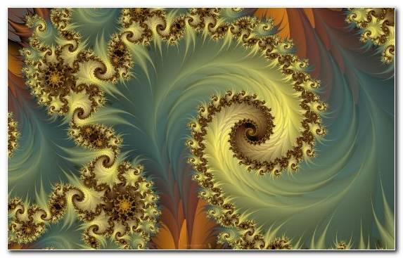Image Pattern Flora Design Creative Arts Fractal