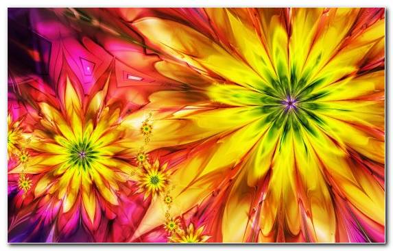 Image Petal Dahlia Flowering Plant Fractal Art Yellow