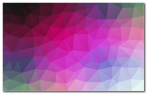 Image Petal Geometry Triangle Design Purple