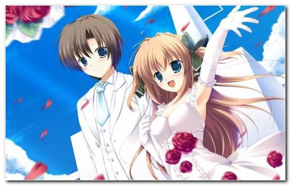 Image Petal Otaku Cartoon Mangaka Marriage