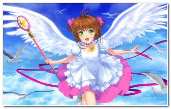 Image pink mangaka sakura kinomoto tomoyo daidouji fairy