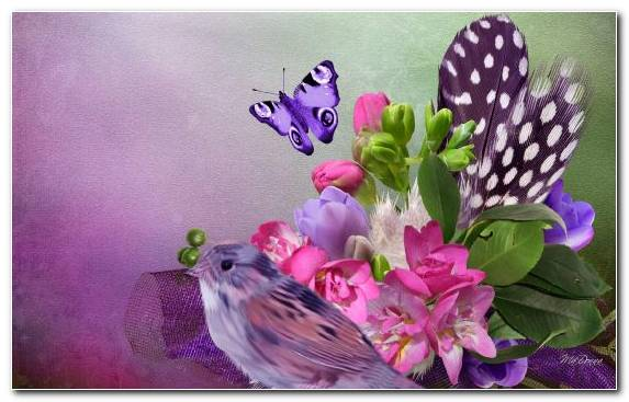 Image Plant Moths And Butterflies Factory Bird Pollinator