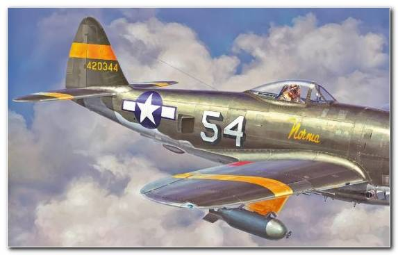 Image Plastic Model Hasegawa Corporation Republic P 47 Thunderbolt Fighter Aircraft Aviation