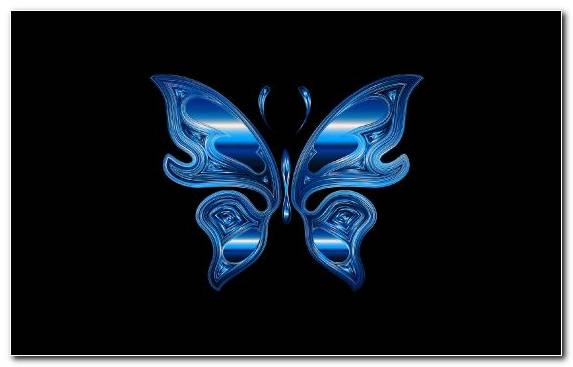 Image Pollinator Electric Blue Wing Fractal Art Invertebrate