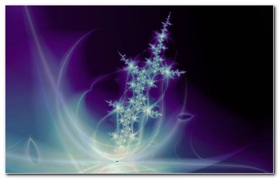 Image Purple Darkness Space Fractal Art Graphics