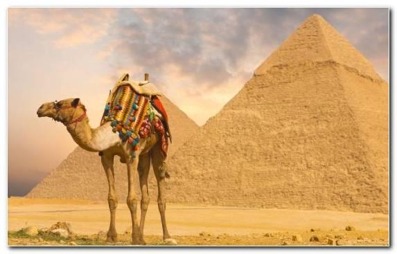 Image Pyramid Oasis Erg Cairo Luxor