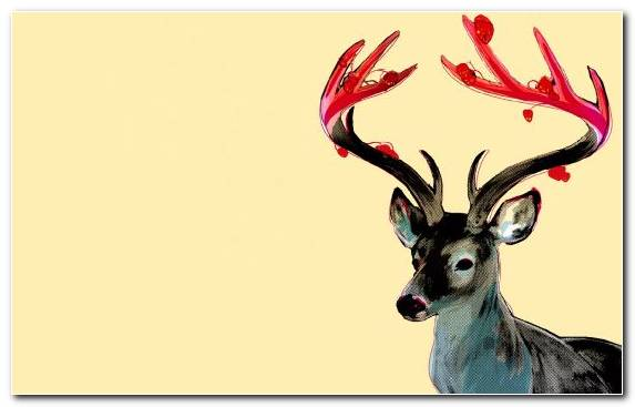 Image reindeer abstract art tail antler horn