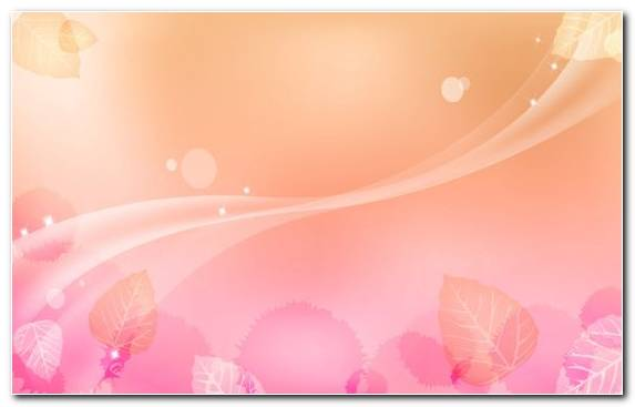 Image Rose Graphics Petal Light Color