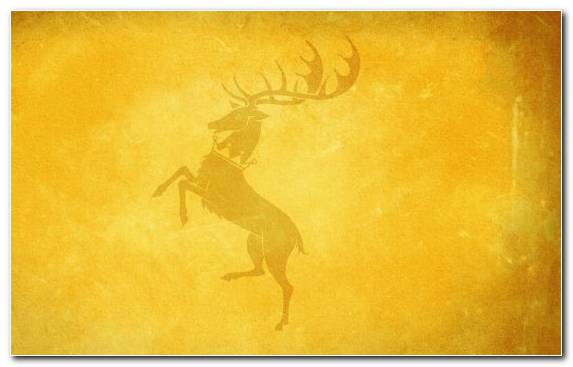 Image Sky A Game Of Thrones Creative Arts House Baratheon Art