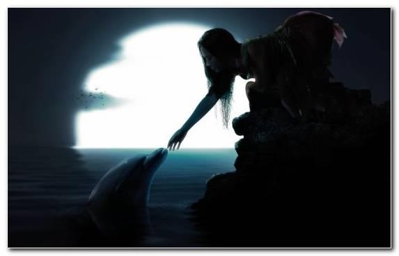 Image Sky Girl Dolphin Water Ocean