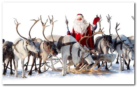 Image Snow Herd Ded Moroz Wildlife Christmas Decoration