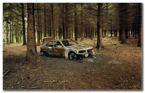 Image Sports Car Off Roading Nature Bmw Car
