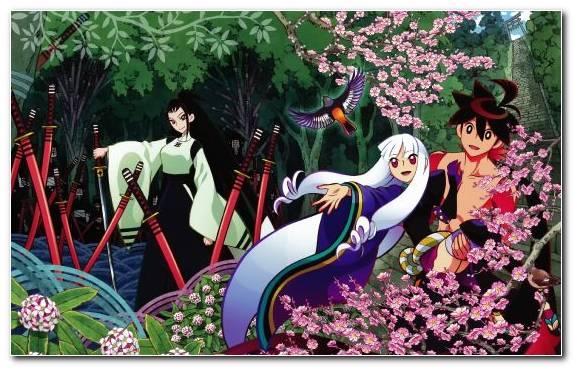 Image spring illustration katanagatari flora tree