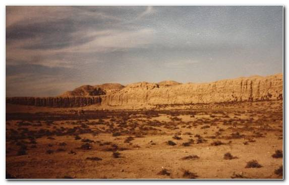 Image Steppe Shrubland History Desert Ecoregion