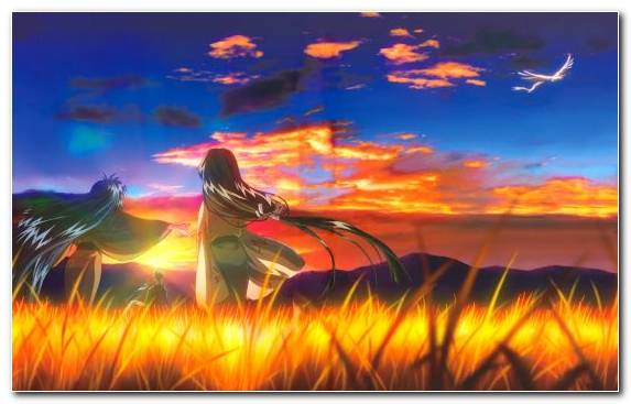 Image Television Ecosystem Anime Evening Sky