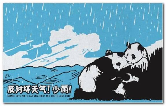 Image Text Giant Panda Sky Mammal Illustration