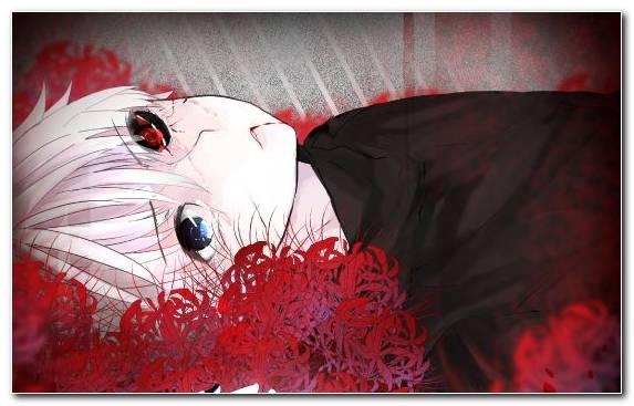 Image Tokyo Ghoul Manga Fan Art Red Anime