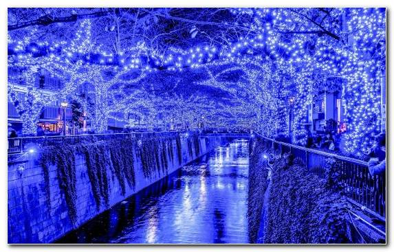 Image Tokyo Purple Lighting Christmas Day Metropolis