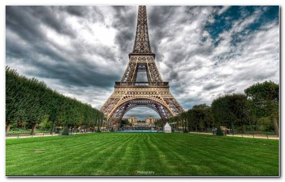 Image Tree Eiffel Tower Historic Site Tourist Attraction Nature
