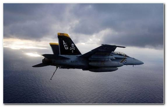 Image United States Navy McDonnell Douglas F A 18 Hornet Mcdonnell Douglas F 15 Eagle Jolly Roger Airplane
