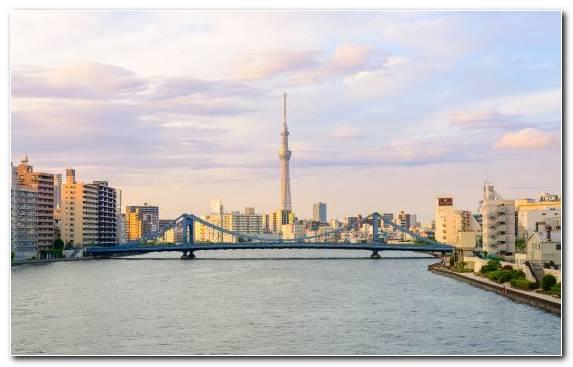 Image urban area daytime cityscape tower skyscraper