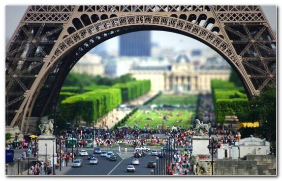 Image Urban Area Landmark Plant Eiffel Tower Capital City