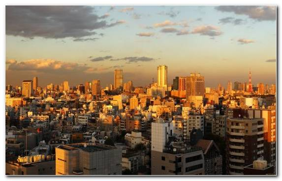 Image Urban Area Skyline Cityscape Daytime City