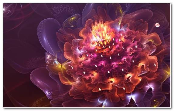 Image Violet Television Art Space Fractal Art