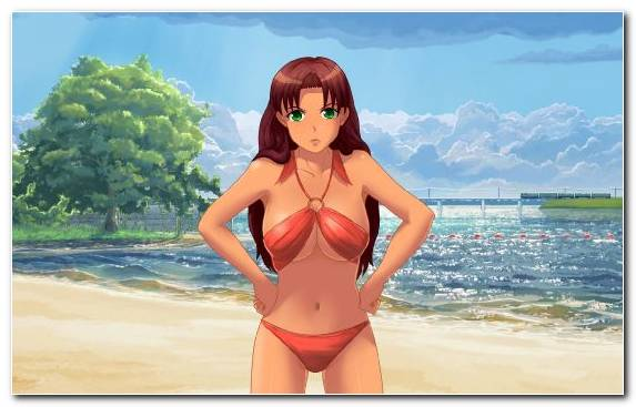 Image Visual Novel Video Games 2013 Brown Hair Swimwear
