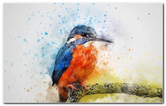 Image Watercolor Painting Painting Bird Canvas Art