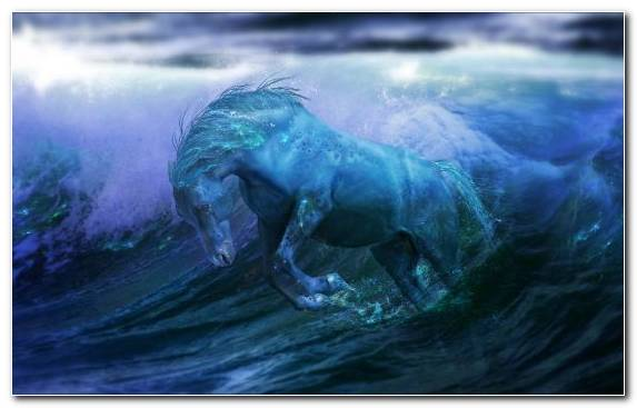 Image Wave The Scorpio Races White Wind Wave Arabian Horse