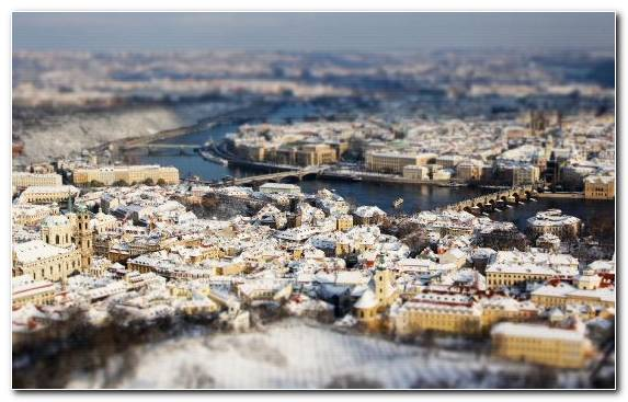 Image Winter Urban Area City Birds Eye View Cityscape