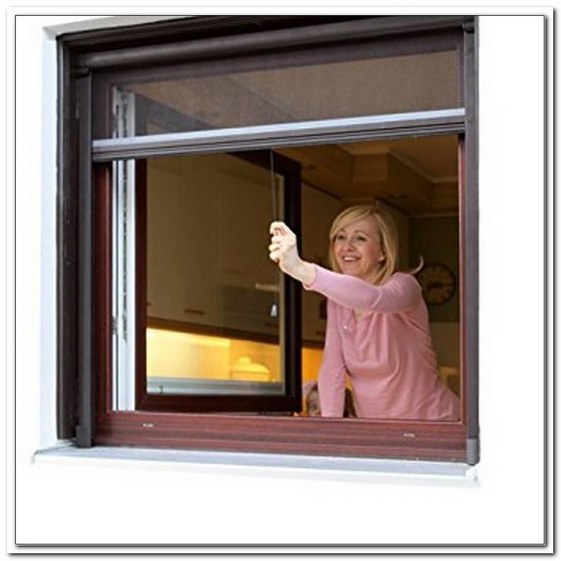 Insektenschutzrollo Eco F?R Fenster