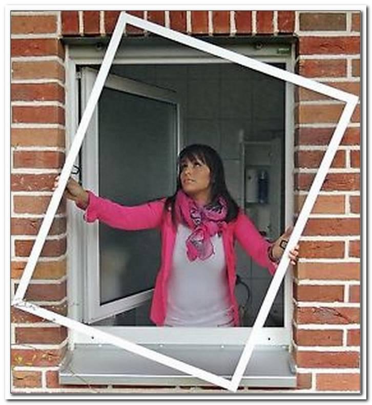 Insektenschutzrollo Fenster 150x150