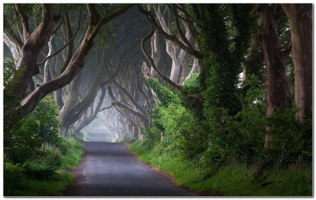 Ireland Nature Wallpaper Background Desktop Image