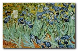 Irises By Vincent Van Gogh Image By ? J.P.GETTY TRUSTCORBIS