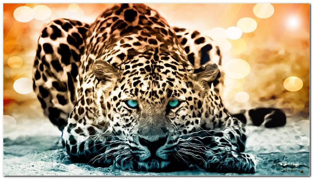 Jaguar Backgrounds