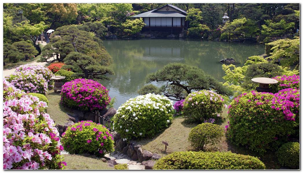Japanese Garden Wallpaper HD Flowers A Japanese Garden House 1920x1080