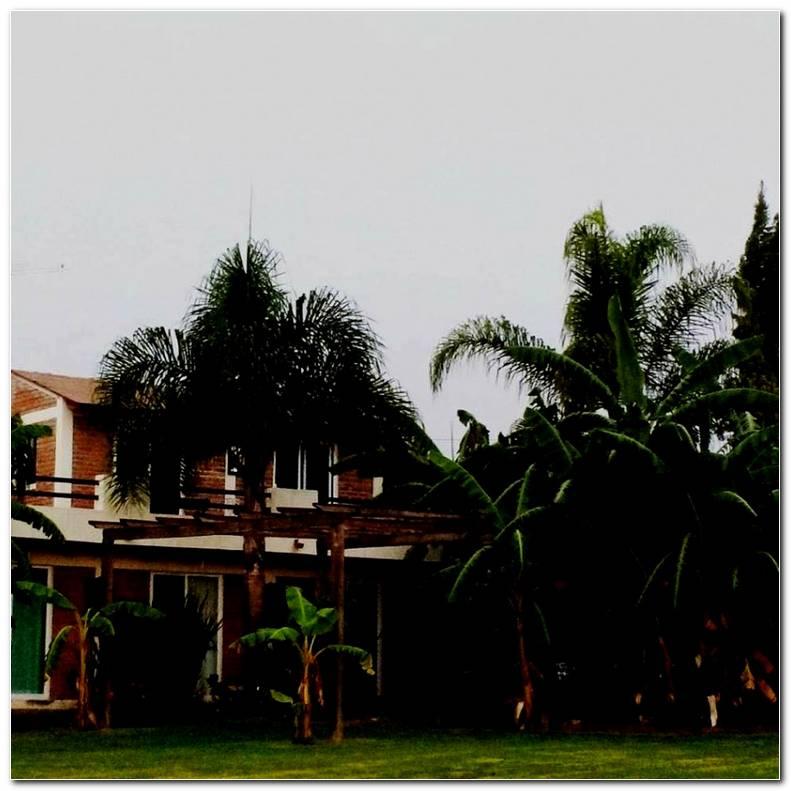 Jard N Quinta Esmeralda Aguascalientes