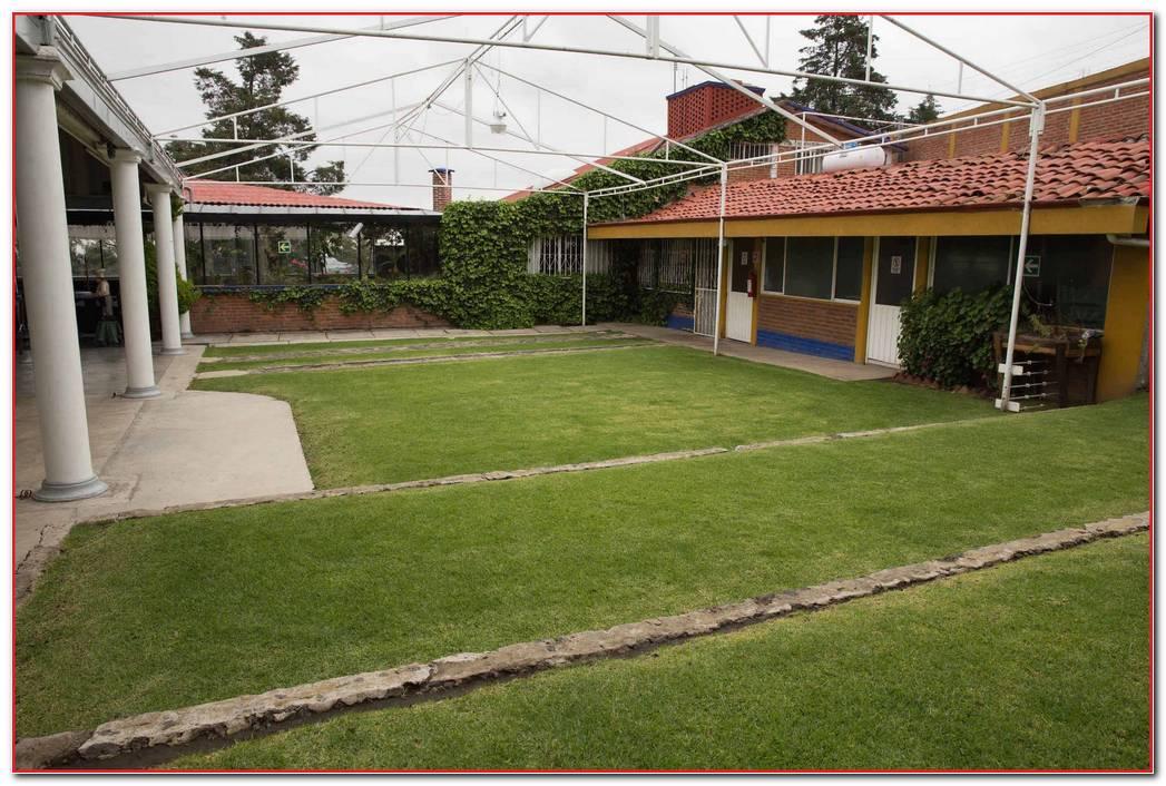 Jard N Quinta Tlalpan