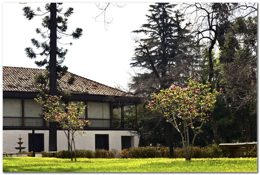 Jardin 38 Rosario