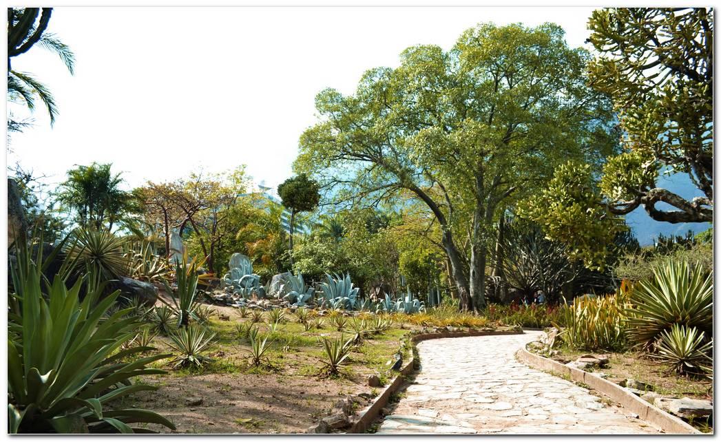 Jardin Xer Filo
